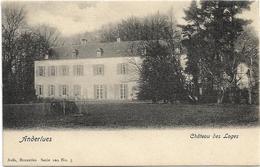 Anderlues   *  Château Des Loges   (Nels, 5) - Anderlues