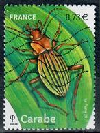 Yt 5150-8 Carabe - France
