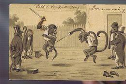 Singe Humanisé - Combat épée - Escrime -belle Fantaisie Gaufrée - - Apen