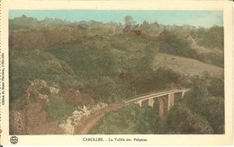 CPA - MANCHE - CAROLLES, La Vallée Des Peintres - Frankrijk