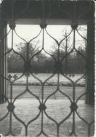 Vladslo Zichtkaart  Duits Kerkhof Met Stempel Ijzerbedevaart 29/06/1985 En Poststempel Datum Ijzerbedevaart - Diksmuide