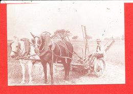 AGRICULTURE FERME D ' ANTAN AMIENS CREUSE Cp Animée Faucheuse à Rateaux     8  * Format 15 Cm X 10.5 Cm - Landbouw