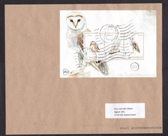 Netherlands: Parcel Fragment (cut-out), 2020, 3 Stamps, Souvenir Sheet, Owl, Owls, Bird, Animal (traces Of Use) - Periodo 2013-... (Willem-Alexander)