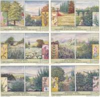 1579 Les Tisanes - KRUIDENDRANKEN - GEZONDHEIDSDRANKEN - Complete Liebig Serie - Liebig