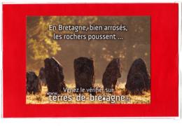 CP 56 Morbihan, Les Alignements Mégalithiques, Menhir, Préhistoire, Carte De Promotion Touristique - Carnac