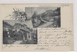 Davos - Waldeck - Selten  - 1903      (P-234-00110) - GR Grisons