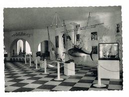 Bruxelles Expo 58 Pavillon De La Tunisie La Mer   Oblitération Tunisienne Et Journée Tunisienne 29-08-1958  Ed Nels - Expositions Universelles