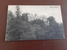 Château De Moisnil - Andenne