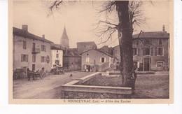 SOUSCEYRAC(ARBRE) - Sousceyrac