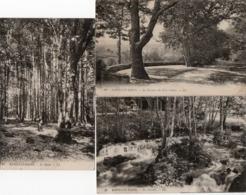88  BAINS Les BAINS   La Terrasse  Des Gros Chênes + La Cascade + Le Salon - Bains Les Bains