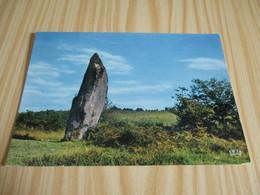 Cieux (87).Menhir De Ceinturat. - France