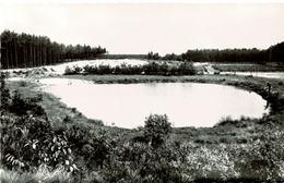 Wolfsdonk - Oude Mechelsebaan - Zwempoel - Aarschot