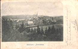 Walcourt - Panorama (DVD Ch. Léonard-Ardache 1901) (prix Fixe) - Walcourt