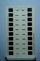 LESTRADE :    WALT DISNEY  N°16  GRAND LOUP ET LES 3 PETITS COCHONS - Stereoskope - Stereobetrachter