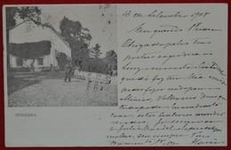 Postcard Of The   Subserra     ( Lote N º 1062 ) - Lisboa