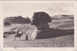 0819 ANIMATIONS CONTRE LE SPHINX, VU DE PROFILE - Sphinx