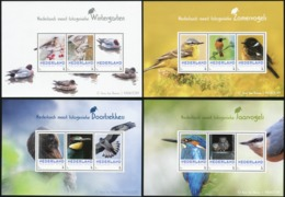 NETHERLANDS 2017 Photogenic Birds Kingfisher Eagles Ducks Personalized Stamps Animals Fauna MNH - Eagles & Birds Of Prey