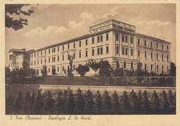 SAN FIOR-TREVISO- STABILIMENTO BACOLOGICO-LIBERALE DE NARDI-CARTOLINA NON VIAGGIATA ANNO 1940-1948 - Treviso