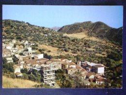 CALABRIA -REGGIO CALABRIA -AGNANA CALABRA -F.G. LOTTTO N°719 - Reggio Calabria