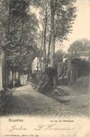 Bruxelles - La Rue De L ' Ermitage - Nels Serie 1 N° 265 - Avenues, Boulevards