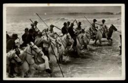13 - Sainte Marie De La Mer 1308 Les Gardians Arrivent Dans La Mer 24 Et 25 Mai #1777 - Saintes Maries De La Mer