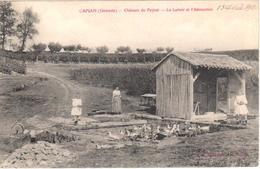 Capian - Château Du Peyrat - Le Lavoir Et L'Abreuvoir - Altri Comuni