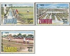 Ref. 286791 * MNH * - ZAMBIA. 1975. IRRIGATION AND DRAINAGE . IRRIGACION Y DRENAJE - Environment & Climate Protection