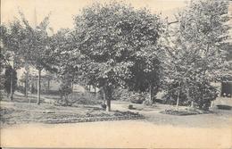Huy - Parc - Jardin - Circulé: 1908 - 2 Scans. - Huy