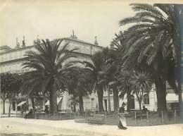 230420 - PHOTO ANCIENNE - 06 CANNES Les Palmiers - Cannes