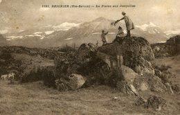 REIGNIER ESERY - La Plaine Aux Jonquilles à Reignier - Autres Communes