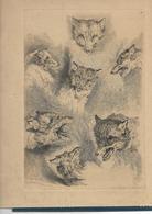 Les Loups.Gravure De J. Elias Redinger - Other Collections