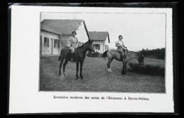 Sainte Hélene (Italie)  - Cavalières à Cheval - Coupure De Presse (encadré Photo) 1936 - Equitation