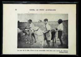 Dajarra (Désert Australien)   - Course De Chèvres   - Coupure De Presse (encadré Photo) 1936 - Equitation