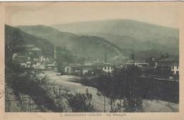 SAN SEBASTIANO CURONE-ALESSANDRIA-VAL MUSEGLIA-CARTOLINA VIAGGIATA IL 22-8-1933 - Alessandria