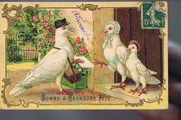 Pigeon Voyageur Facteur - Jolie Carte Gaufrée - Dressed Animals