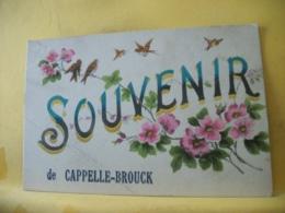 59 6589 CPA 1917 - 59 SOUVENIR DE CAPPELLE BROUCK - FLEURS ET OISEAUX - France