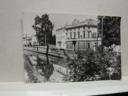 BATTAGLIA  TERME  -- PADOVA  --- VIA MAGGIORE - Padova (Padua)