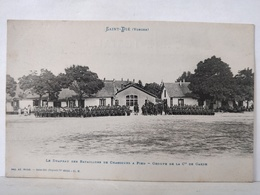 Saint Dié. Drapeau Des Bataillons De Chasseurs à Pied. Groupe De La Cie De Garde - Saint Die