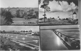ILE DE NOIRMOUTIER - LOT DE 4 CARTES - VERS 1950/1960 - Ile De Noirmoutier