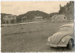 VW Coccinelle Dans Une Prairie.   Tirage Original D'époque. C 1960 FG0637 - Automobili
