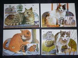 "BELG.1993 2521 2522 2523 2524 Mcards Fdc  : ""Nature , Katten / Chats "" - 1991-00"