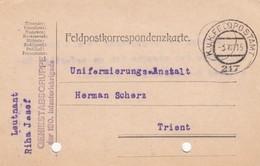 9733-FRANCHIGIA - AUSTRIA - K.U.K. FELDPOSTAMT 217 - 3-8-1915 - Covers & Documents