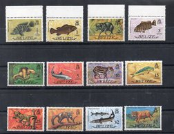 BELIZE - 1974 - FAUNE - FAUNA - 12 Timbres - 12 Stamps - - Belize (1973-...)