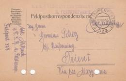 9741-FRANCHIGIA - AUSTRIA - K.U.K. FELDPOSTAMT 323 - 28-8-1916 - Lettres & Documents