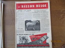 LE SILLON BELGE DU 27 AOÛT 1955 ARDENNAIS OU BRABANCONS,BELGE OU ARDENNAIS,COPI D'ELINGEN,OBUS DELCOUR,FRIDA VAN'T GANZE - Animals