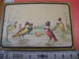 6 Chromos, Litho Set 1875 Complete Anthropomorphic Dressed Birds Skating, Cook Sailing, Dancing ARTs Acting Like People - Sonstige