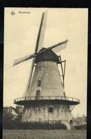 Carte Neuve: BOECHOUT  :  Windmolen (moulin à Vent) - Boechout