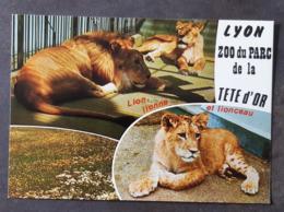 Carte Vierge - R. 86 - Lyon - Zoo Du Parc De La Tete D'Or - Lyon
