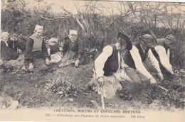 BRETAGNE: Arrachage Des Pommes De Terre Nouvelles - Bretagne