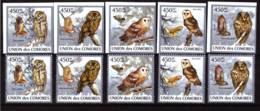 Comoros, 2009. [cm-28] Owls - Hiboux & Chouettes